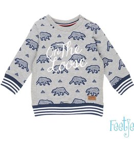 Feetje Sweater 'Outsiders' grijs melange