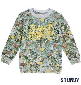 Sturdy Sturdy Sweater Palm Sunray Grijs.