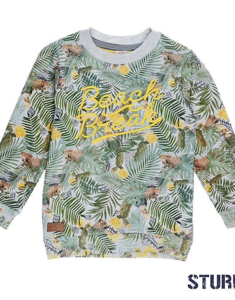 Sturdy Sturdy Sweater Palm Sunray