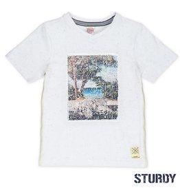 Sturdy Sturdy Shirt Flipping artwork