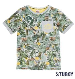 Sturdy Sturdy Shirt Palm Sunray