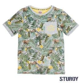 Sturdy Sturdy T-Shirt Palm Sunray grijs.