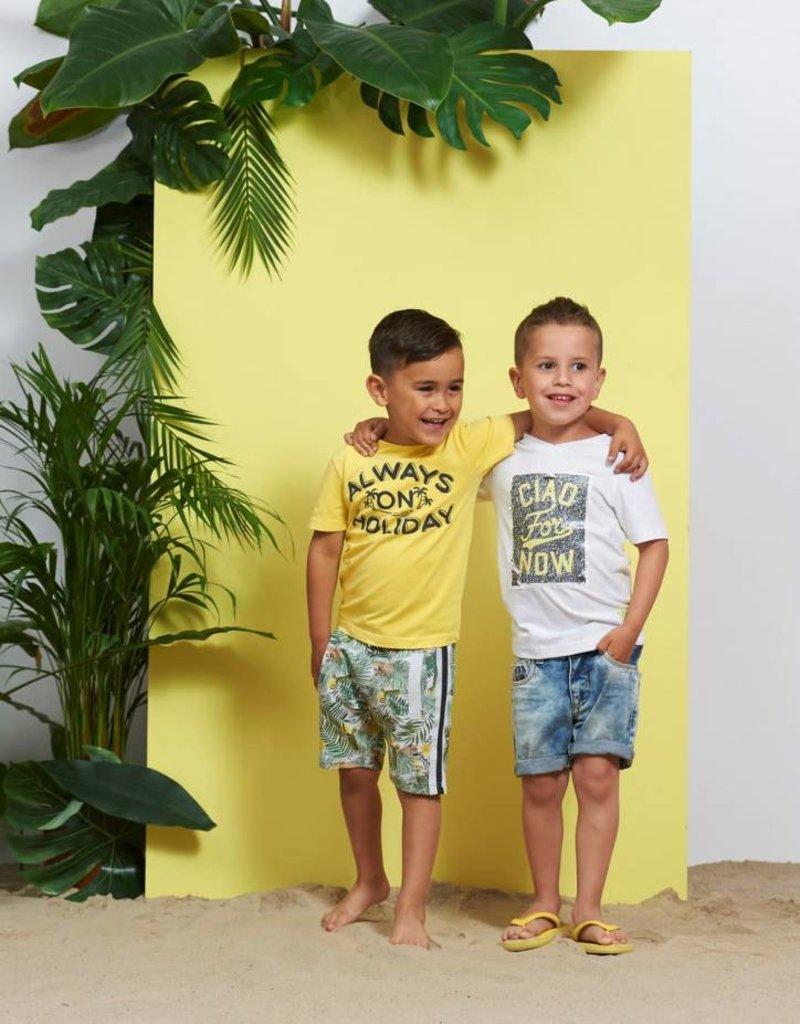 Sturdy Sturdy Short Palm Sunray grijs