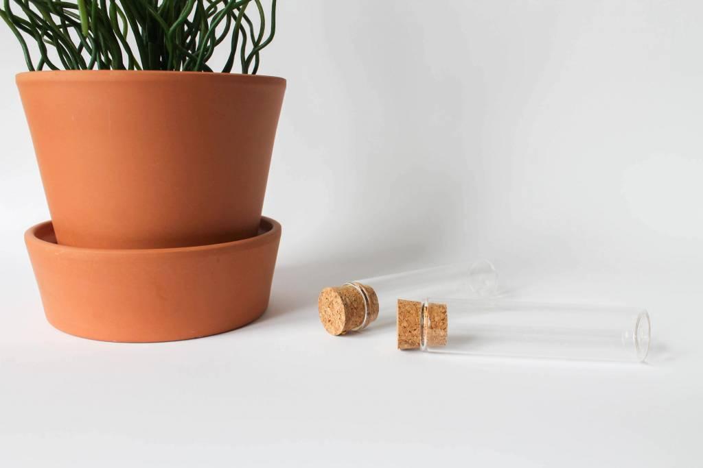 Glazen koker met kurk - 10 cm