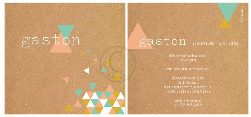 Geboortekaartje Gaston