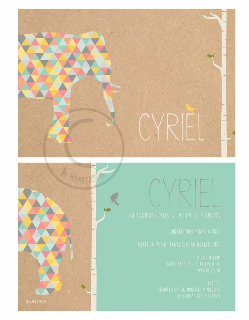 Geboortekaartje Cyriel