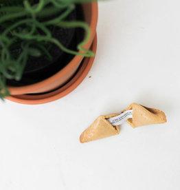 Fortune cookie zwanger