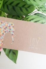 geboren - 04-06 Lily