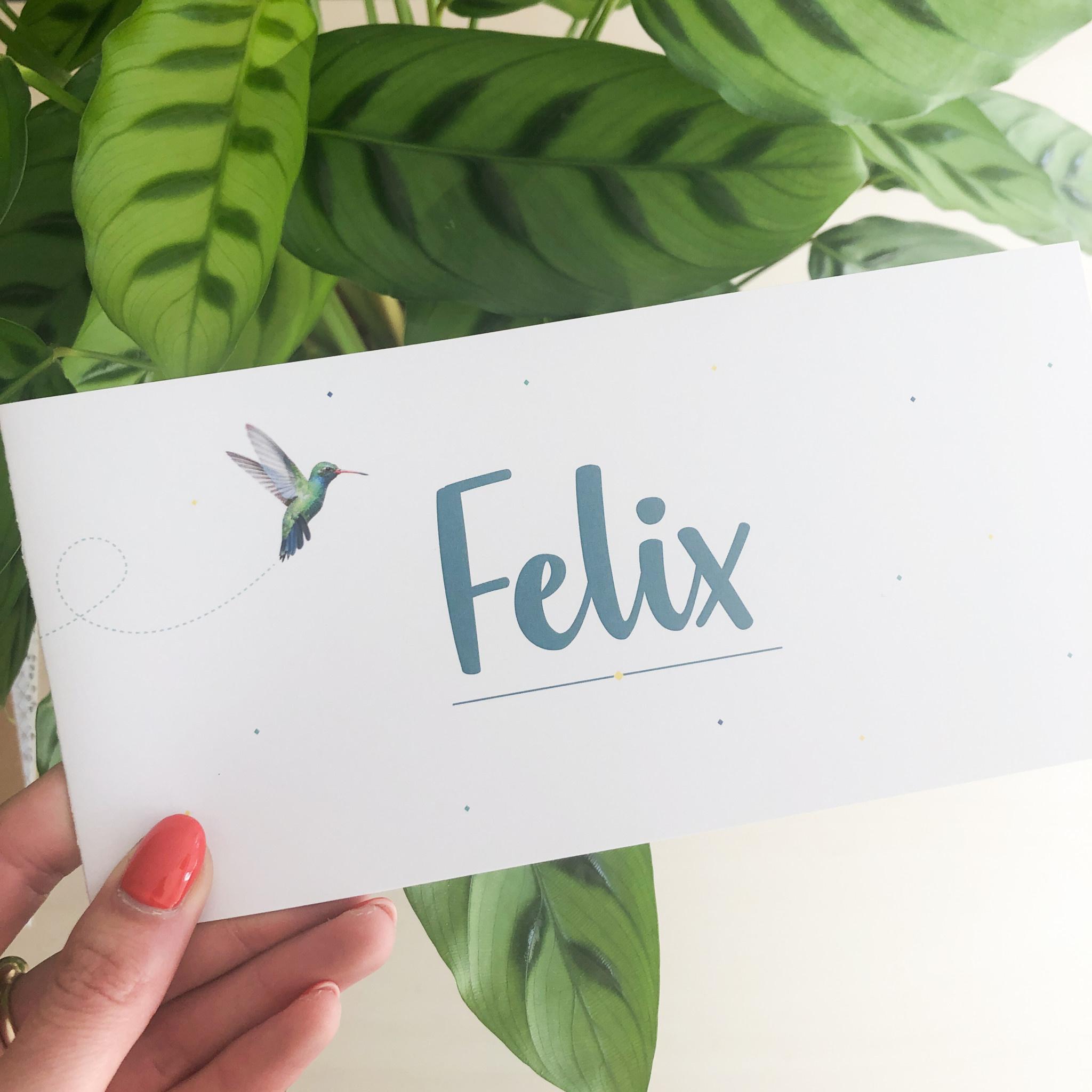 geboren - 04-09 Felix