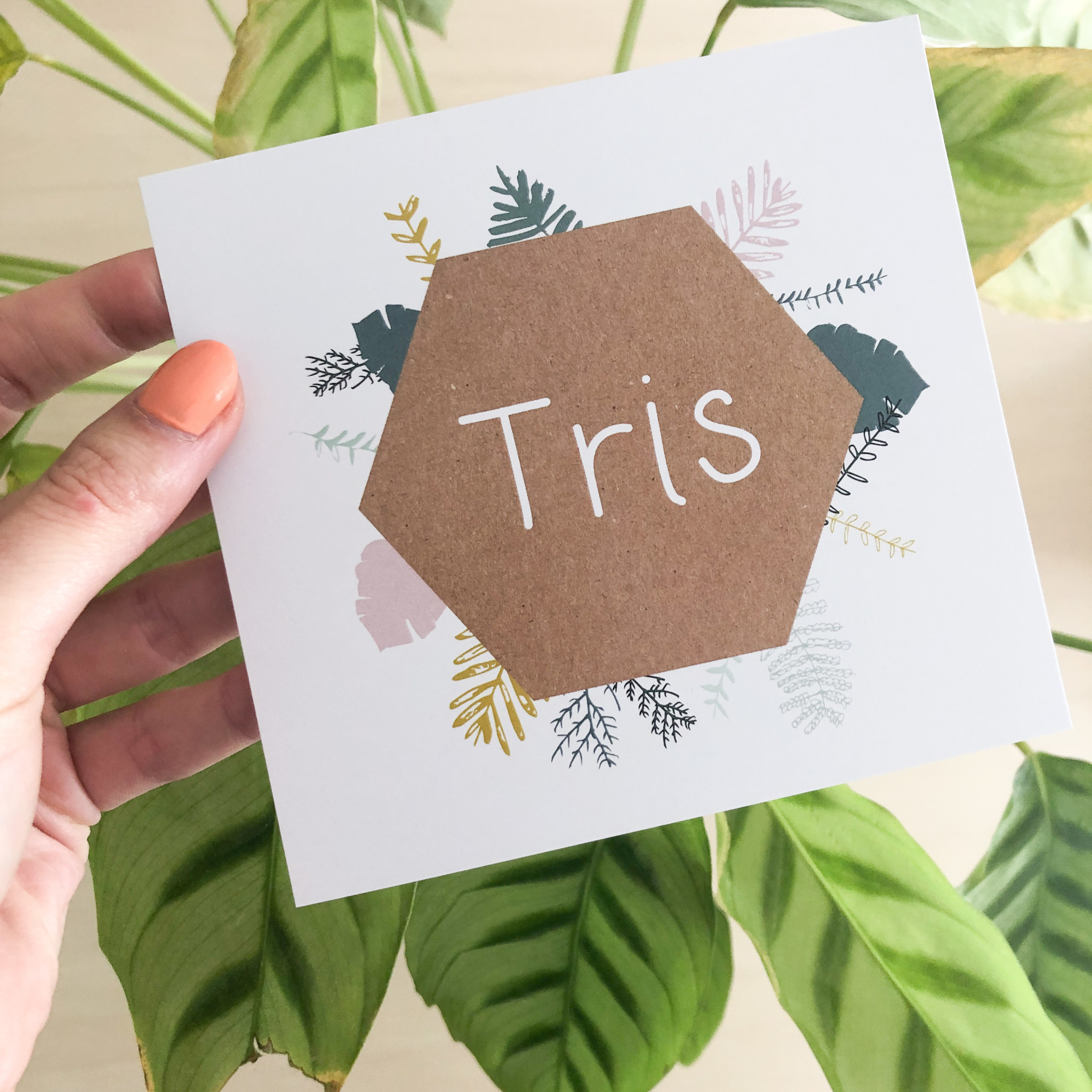 geboren_07-08 Tris