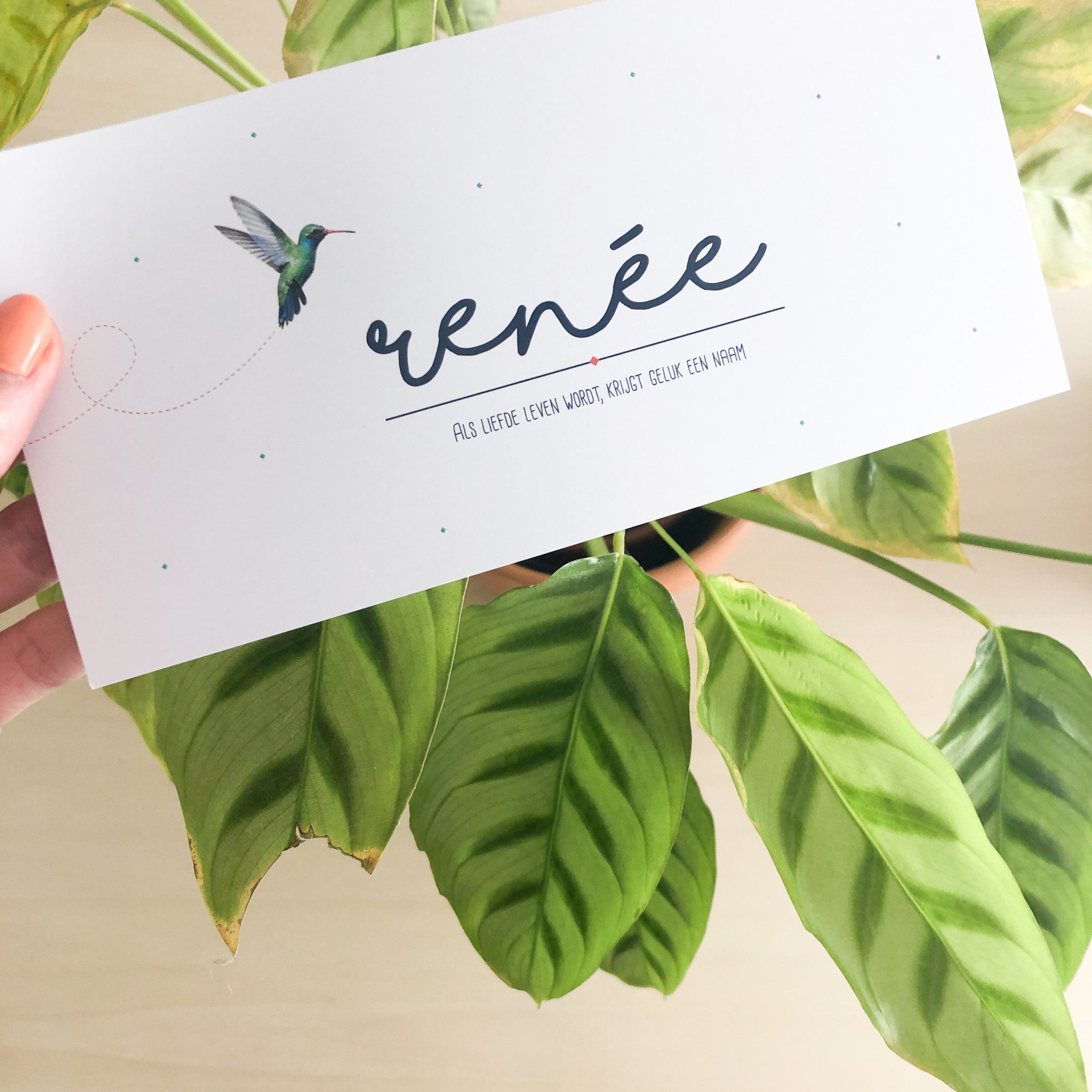 geboren 07-24 Renée