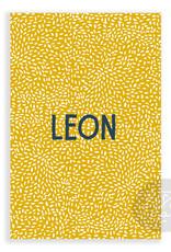 Geboortekaartje Leon