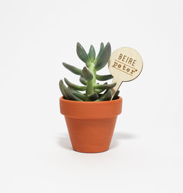 Plantenlabel beire peter