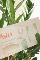 geboren_04-29 Aster