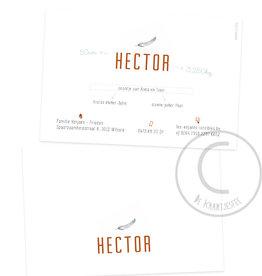 Geboortekaartje Hector