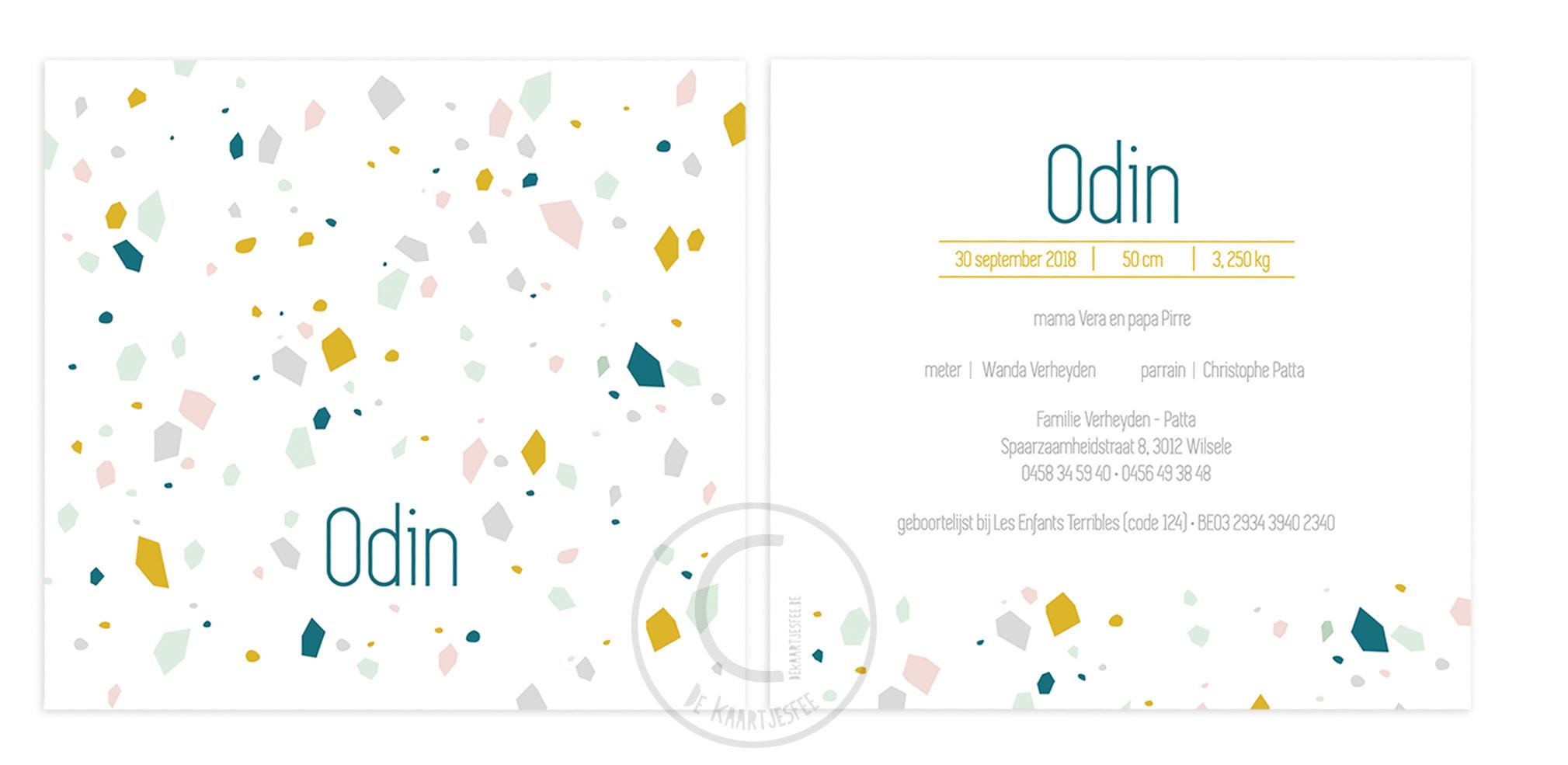 Geboortekaartje Odin
