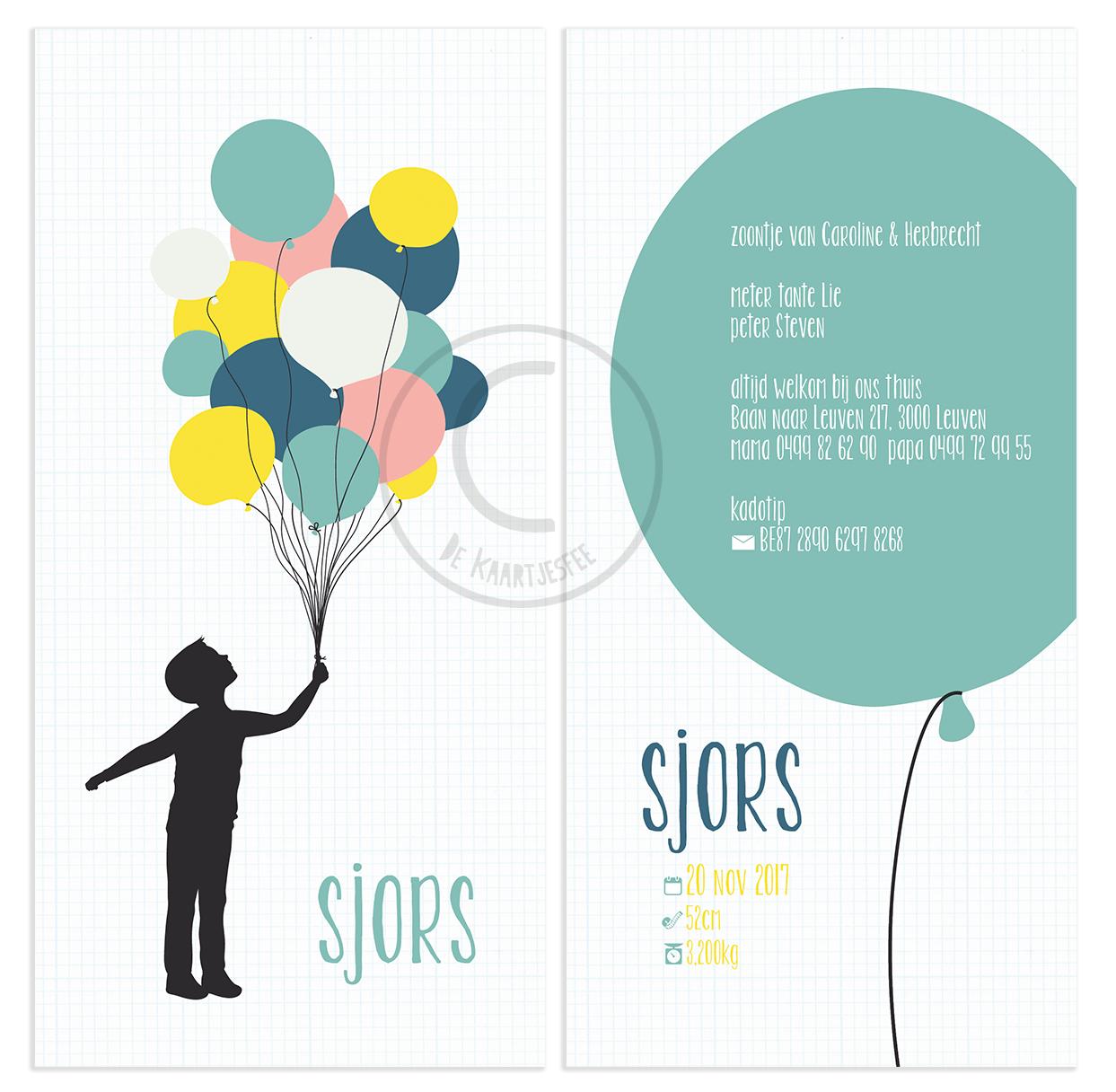 Geboortekaartje Sjors