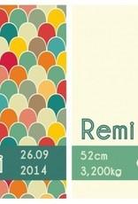 Geboortekaartje Remi