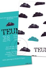 Geboortekaartje Teun