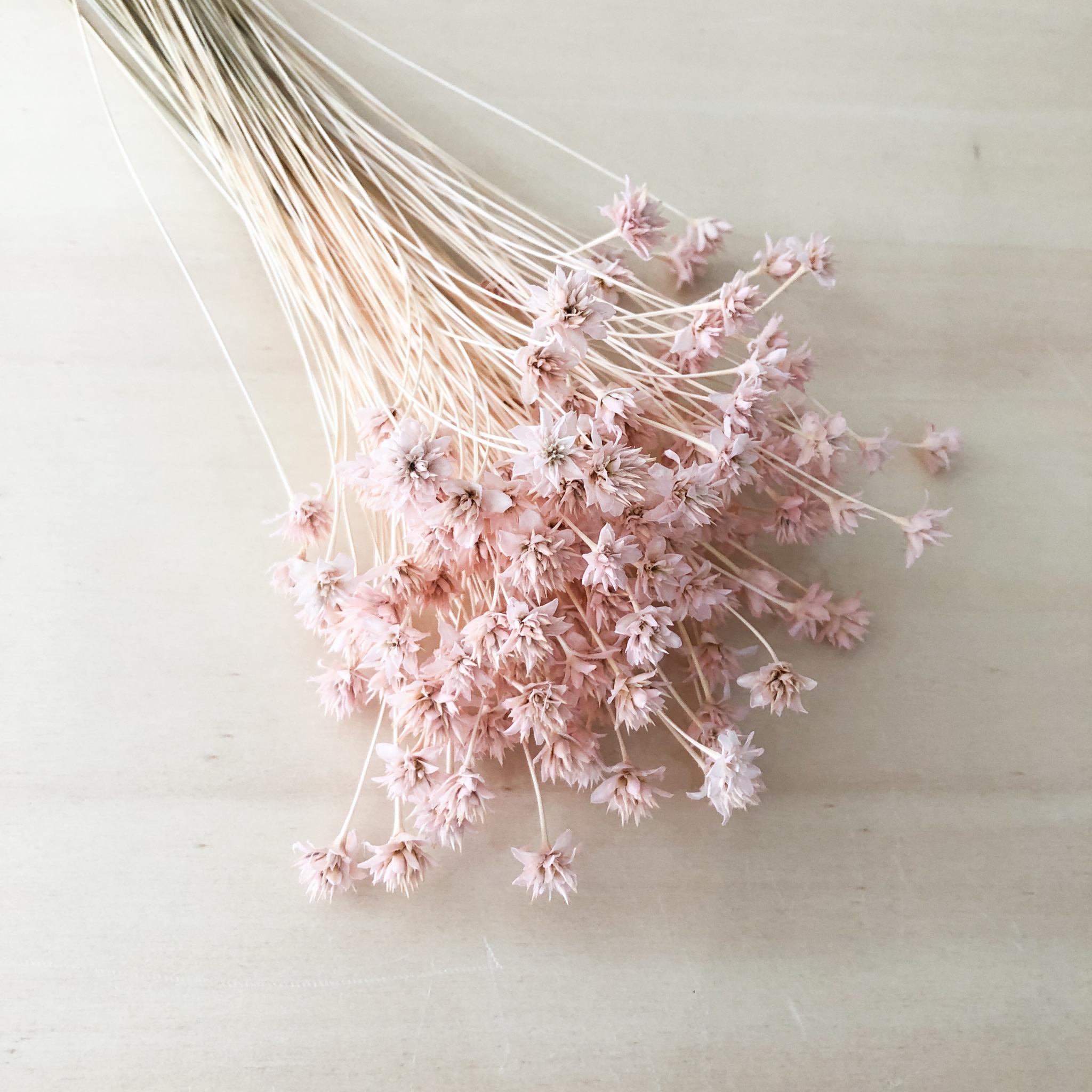 Hill Flower