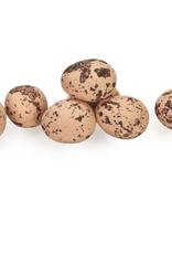Chocolade eitjes abrikoos klein