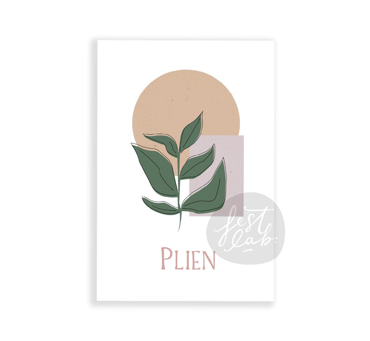 Geboortekaartje Plien