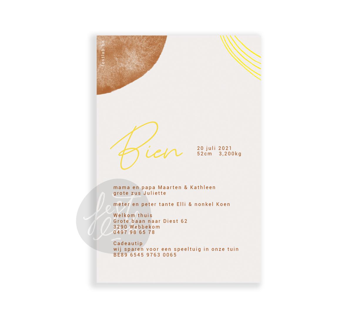 Geboortekaartje Bien