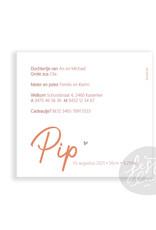 Geboortekaartje Sim/Pip