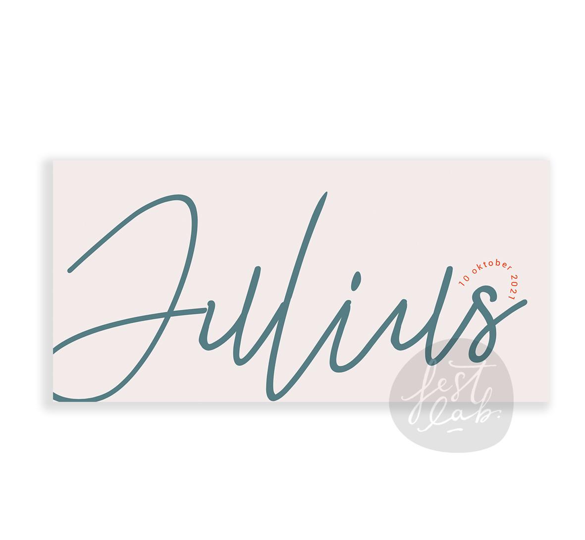Geboortekaartje Julius