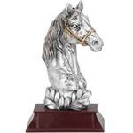 Sportfiguur paardenhoofd Castricum