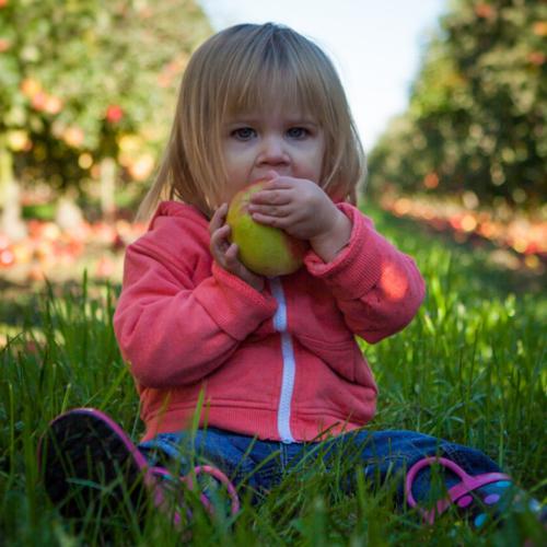 Wie wichtig sind Kalorien für dein Kind?