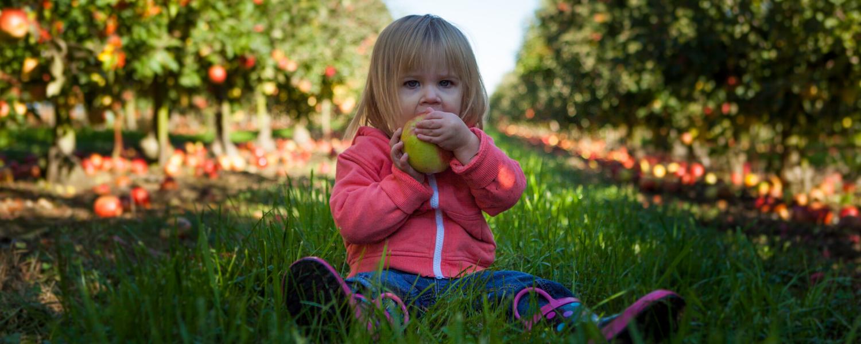 Wie wichtig sind Kalorien für Ihr Kind?