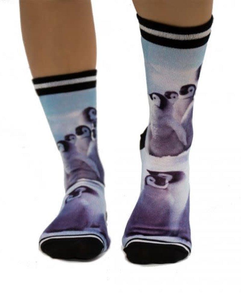 Sock My Feet sock my female pinquin