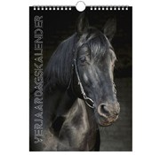 Lannoo Horses Birthday Calendar