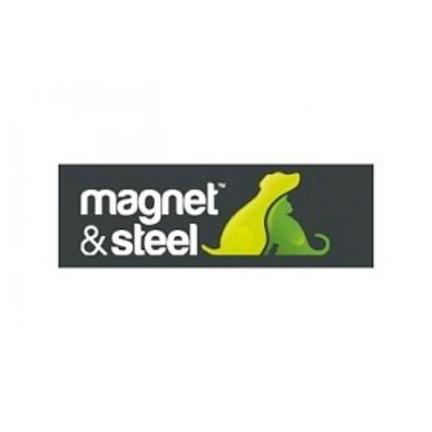 Magnet & Steel