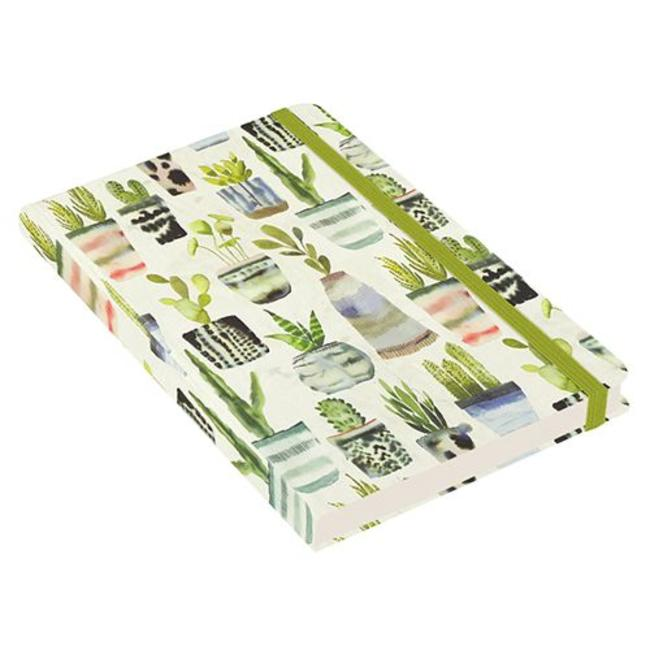 Peter Pauper Wasser-Farbe Succulents Notizbuch mittelgroße (A5)