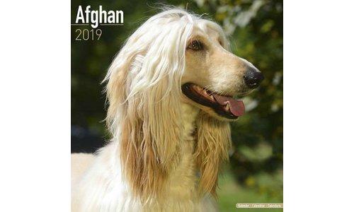 Afghaanse Windhond Kalenders 2019