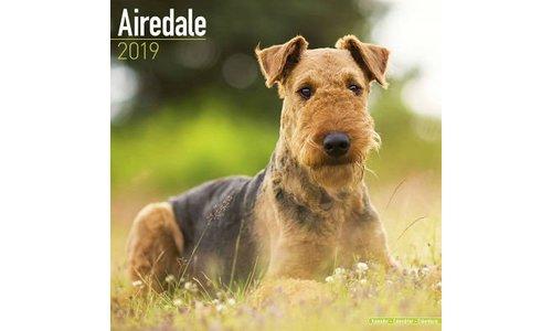 Airedale Terrier Kalenders 2019