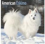 American Eskimo Kalenders 2020