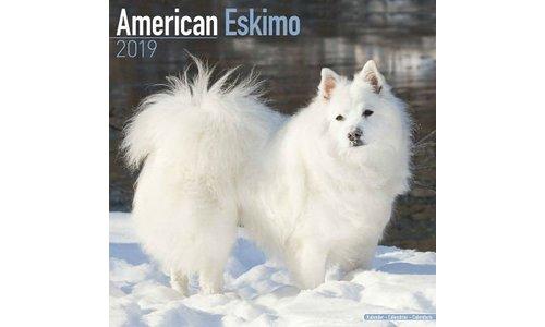 American Eskimo Kalenders 2019