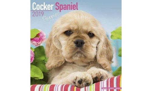 Amerikaanse Cocker Spaniel Kalenders 2019
