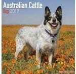 Australian Cattle Dog Kalenders 2020