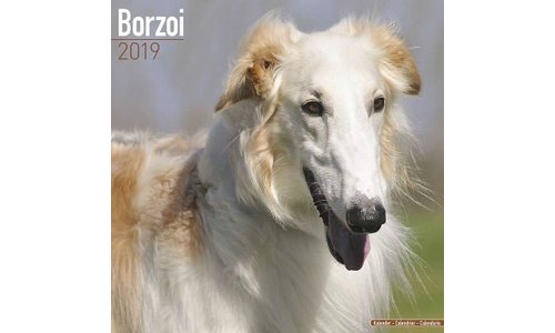 Barsoi Kalenders 2019