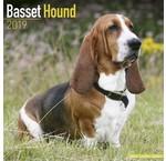 Basset Hound Kalenders 2020