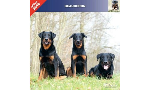 Beauceron Kalenders 2019