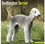 Bedlington Terrier Kalenders 2020