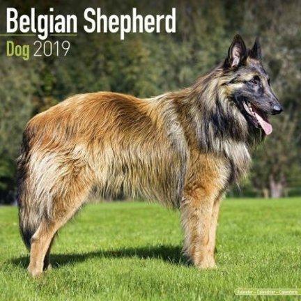 Belgische Herder Kalenders 2019