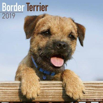 Border Terrier Kalenders 2019