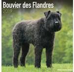 Bouvier Kalenders 2020