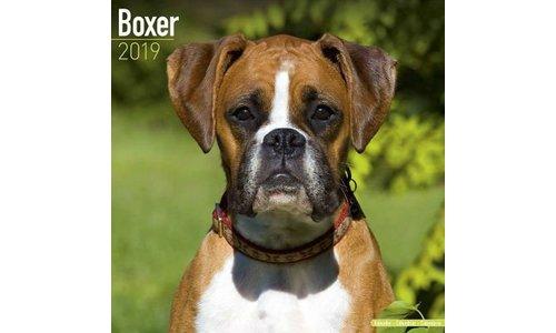 Boxer Kalenders 2019